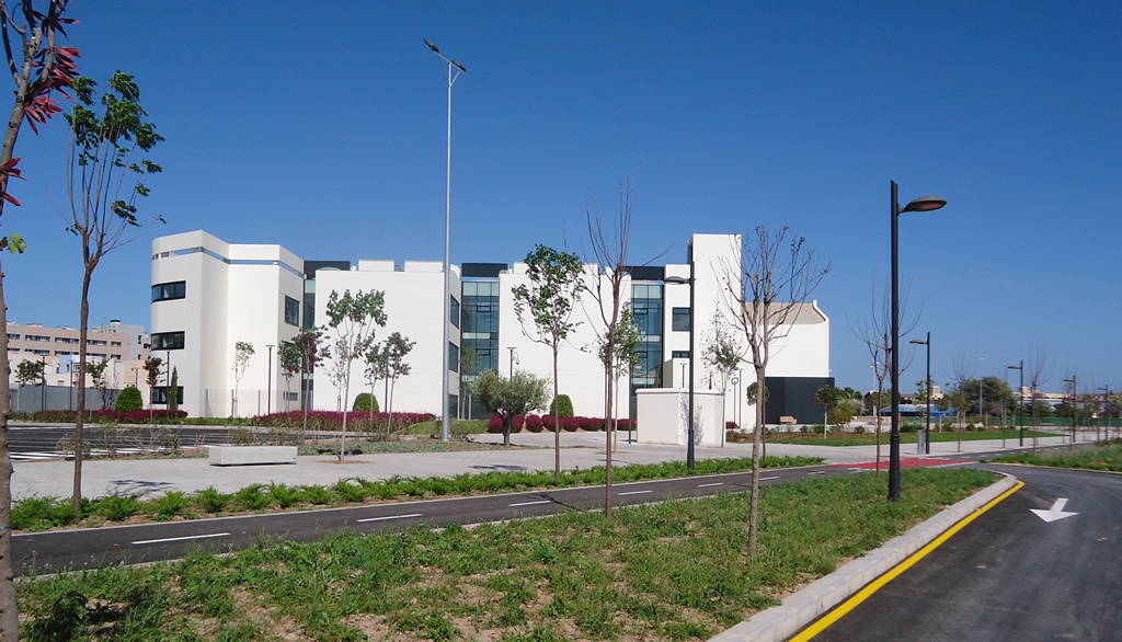 Facultad Educación Alicante